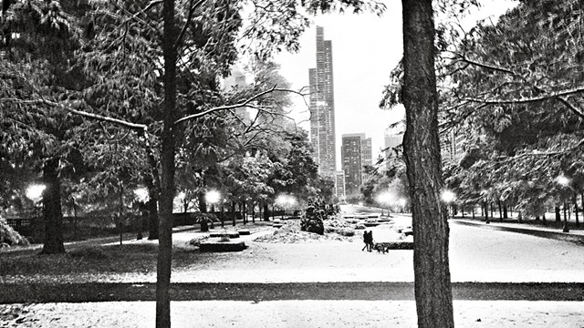 Grant Park After Fresh Snow