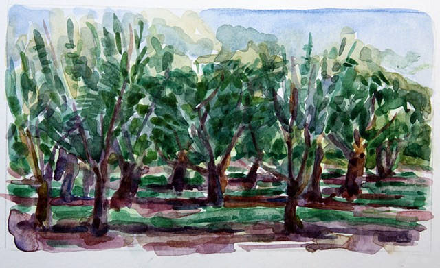 Cherry Orchard, Provence