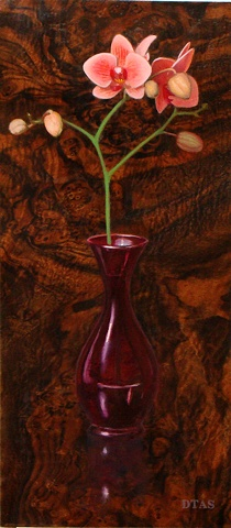 Orchid and Vase