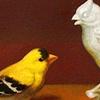 Wunderkammern with Goldfinch for Porter