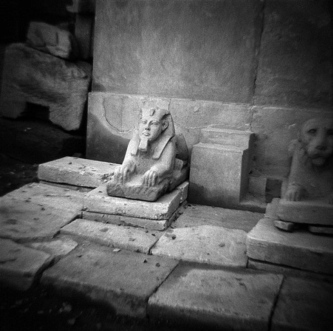 Sphinx, Luxor Temple, Luxor