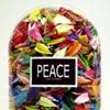 PC aka PEACE CONTAINED