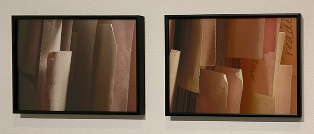 Detail, Untitled (Diptychs)