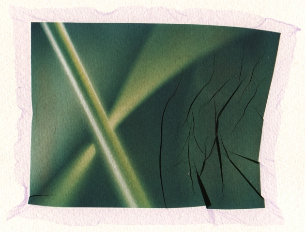 Detail 1, Grass