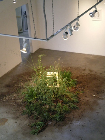 Microwave Planter Installation Photo
