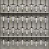 DNA Samples- Specimen Group #6