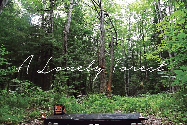IHNW: A Lonely Forest