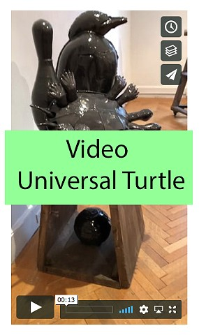 Video of Universal Turtle