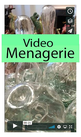 Video of  Menagerie