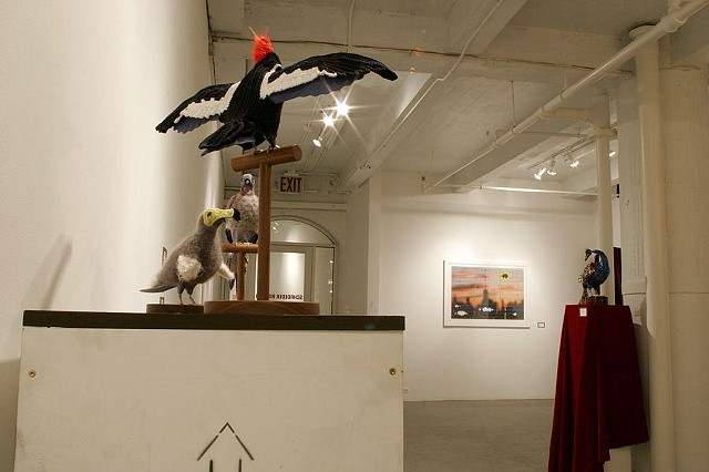 Future Darwinist installation view 3