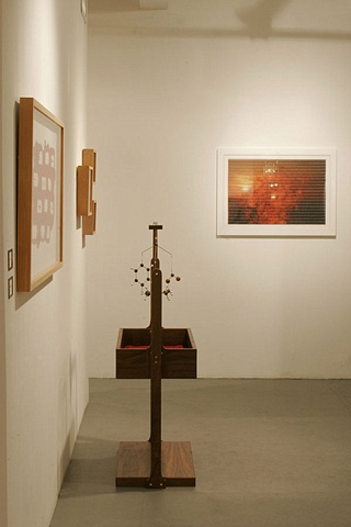 Future Darwinist installation view 12