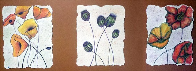 studio fresca, watercolor pencil, color pencil, poppies, triptych, painting, art