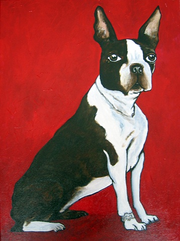 Boston Terrier on red Private Collection