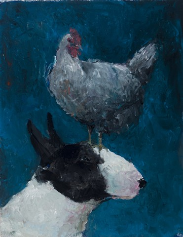 Bull Terrier with Chicken