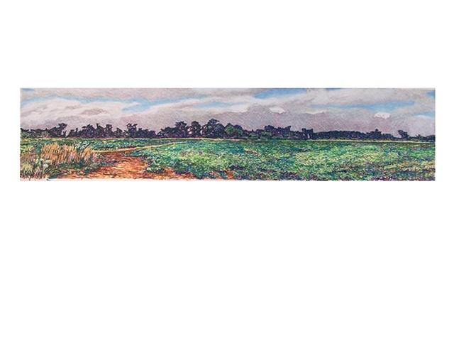 Seapowet Fields