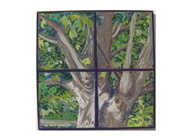 Tree Outside Window, Summer