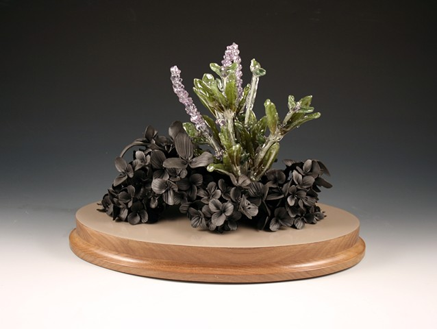 Lamiaceae