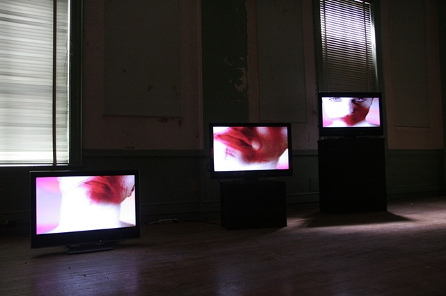 Silent Siren 3 channel video installation