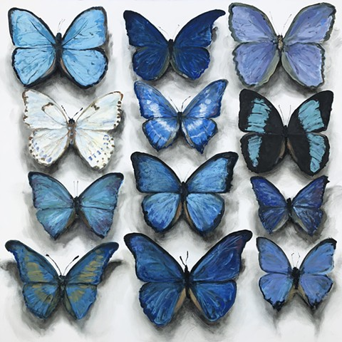 Untitled (Butterfly Blue)