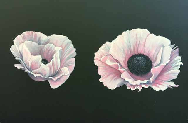 Poppies. Flowers. Oil painting. Adam Umbach.
