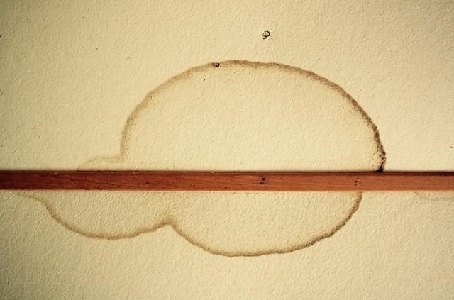 Ceiling Wax & Wane 8