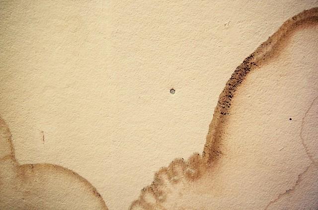 Ceiling Wax & Wane 3