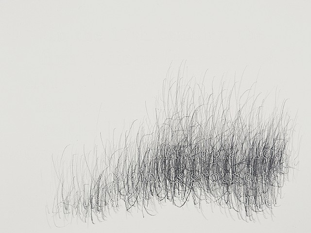 Joanne Aono, Home Fields, drawing, Ethiopia, Teff